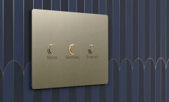 Lutron Takes Lighting Keypad Design to the Next Level with Alisse Wall Control